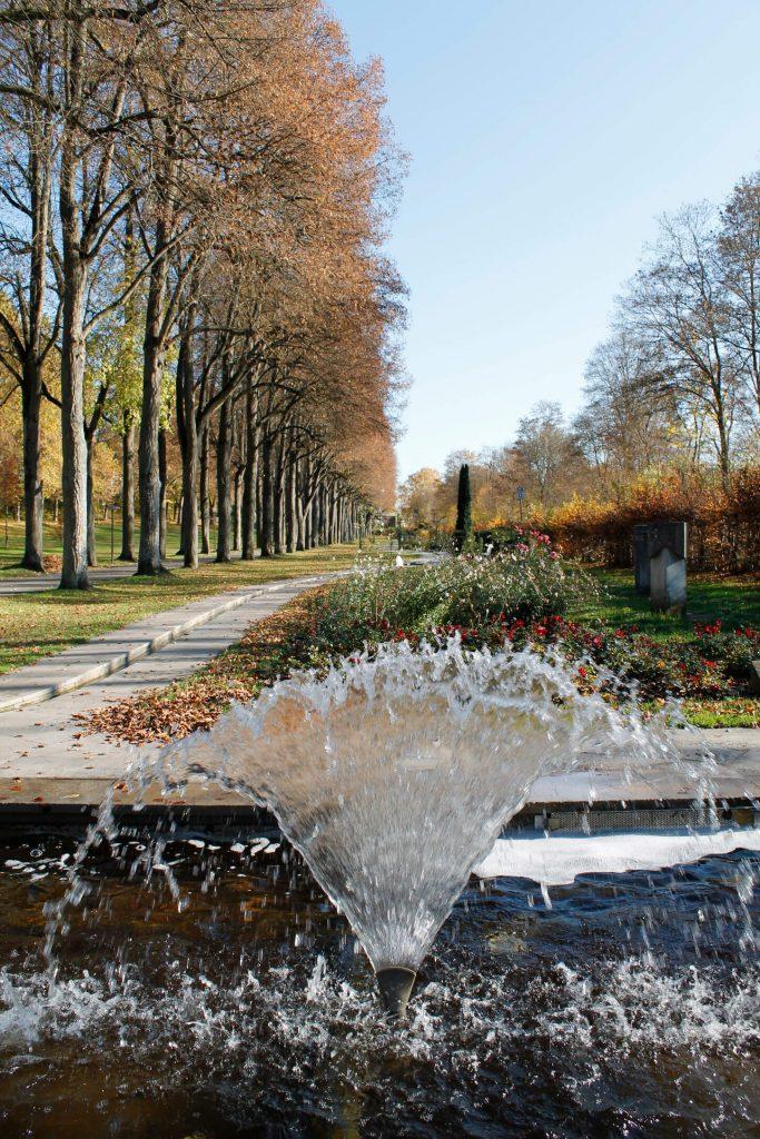 Bad Mergentheim_Park im Herbst